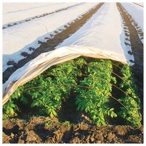 Agribon Crop Protection