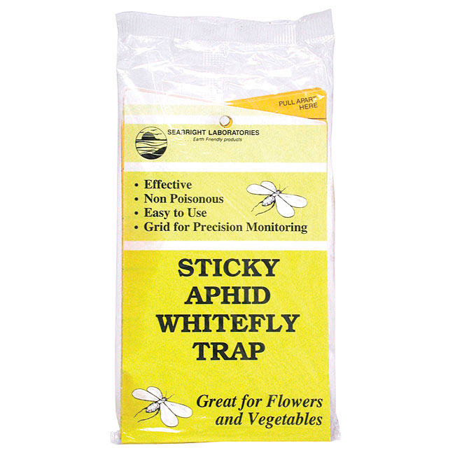 Aphid/Whitefly Yellow Sticky Traps - 5 Pack
