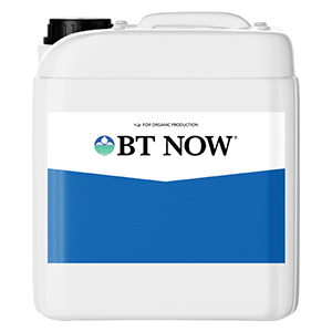 BT NOW®