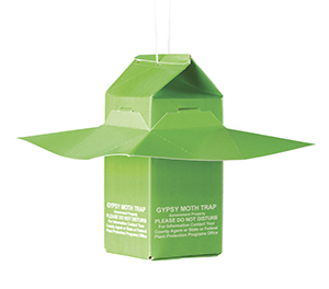Scentry Gypsy Moth Trap & Lures