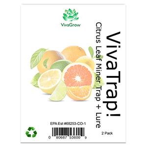 Citrus Leaf Miner Trap & Lure