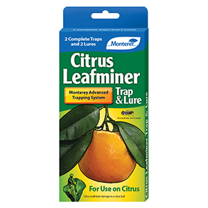 Monterey Citrus Leafminer Trap & Lure - Pack of 2