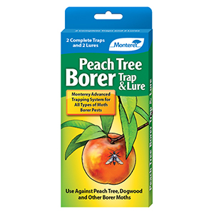 Monterey Peach Tree Borer Trap