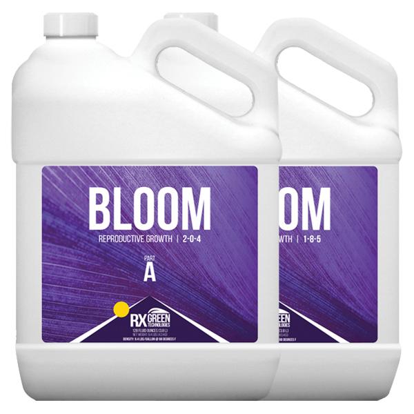 Bloom A & B