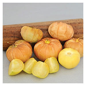 Territorial Seeds - Mexican Strain Tomatillo