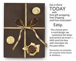 E-Gift Certificate Plus - $500
