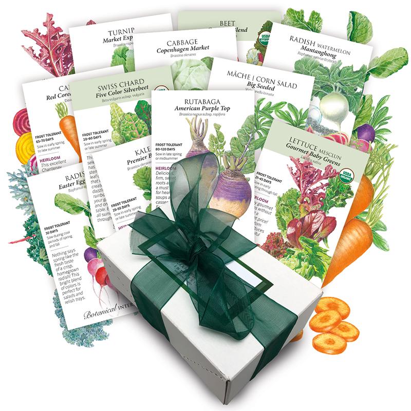 Fall Vegetable Garden Collection