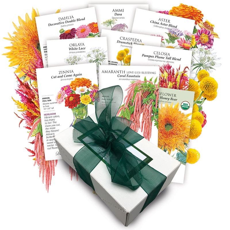 Florist Cutting Flowers Collection