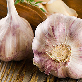 Garlic: Which to Choose?