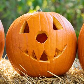 Pumpkins: Keeping Carved Pumpkins Fresh