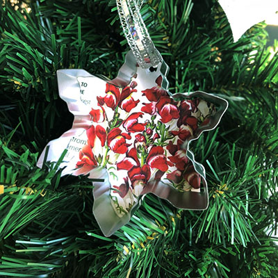 Seed Packet Ornaments
