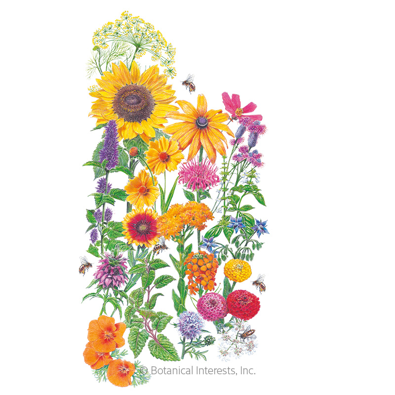 Save the Bees Flower Mix Seeds