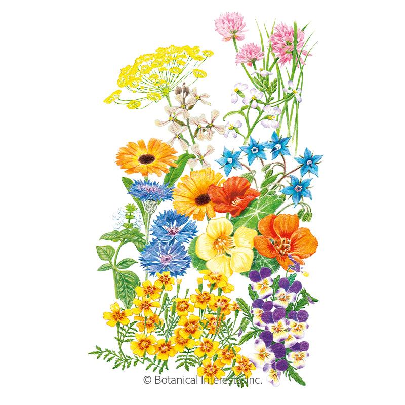 Edible Beauties Flower Mix Seeds