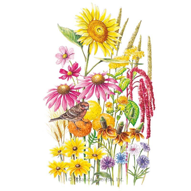 Songbird Delight Flower Mix Seeds