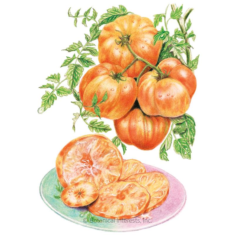 Pineapple Pole Tomato Seeds