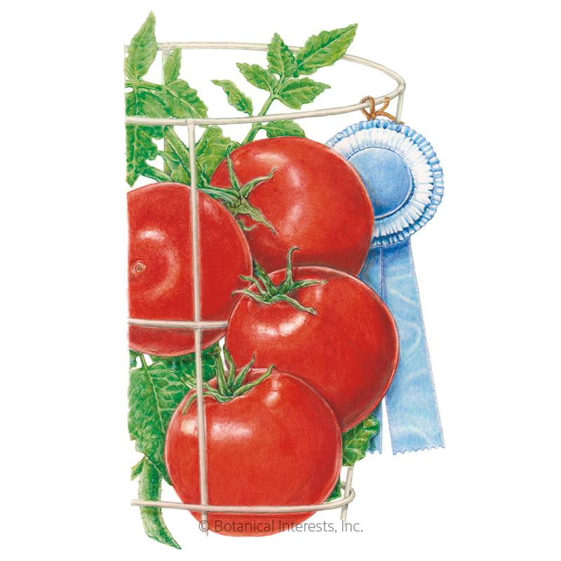 Red Pride Bush Tomato Seeds