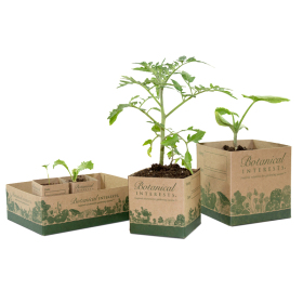 Recycled Paper Pots