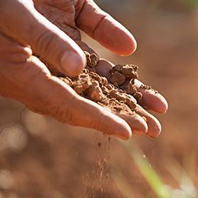 Soil Tests 101