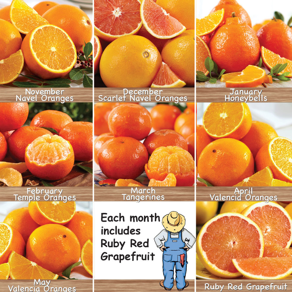 3 Month Citrus Lovers Club
