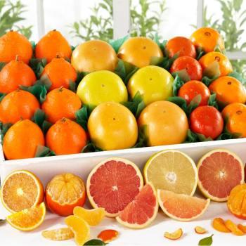 Florida Citrus Assortments