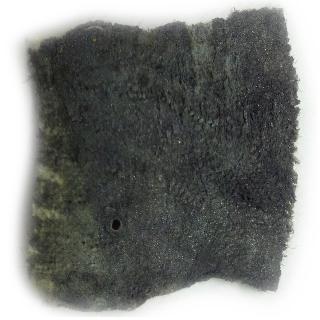 BoreTech Chameleon Gel  Carbon Fouled Barrel