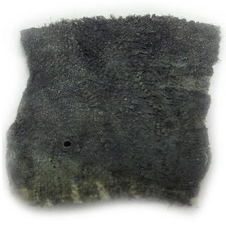 BoreTech Chameleon Gel Copper and Carbon Fouled Barrel
