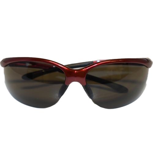 Redhawk Anti--Fog Safety Glasses