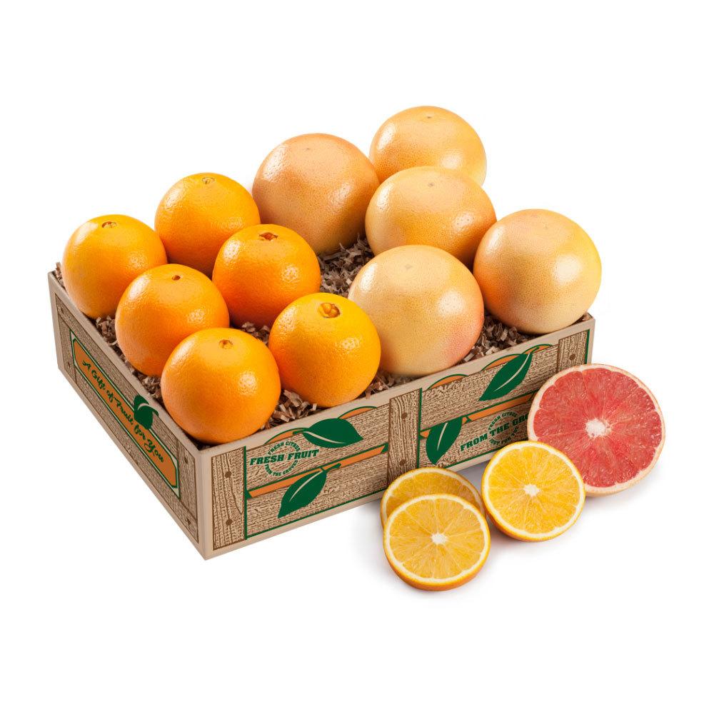 Navels & Red Grapefruit