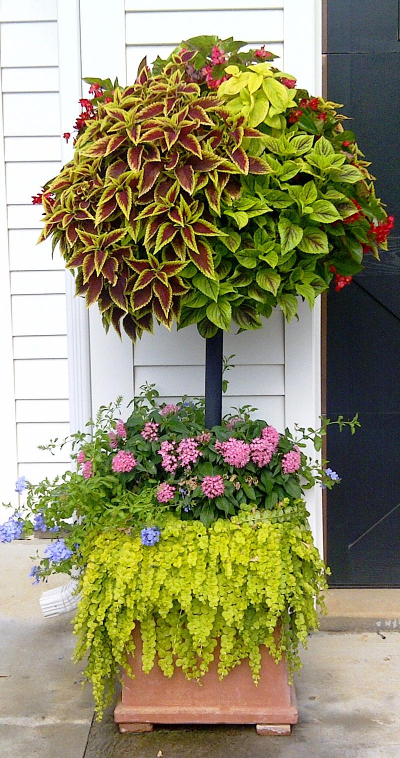 Basket Column Photo Gallery