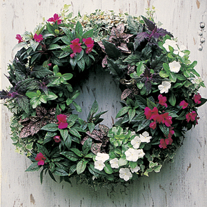 Large 24 Inch Living Wreath Form with Jute Liner