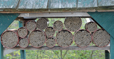 our mason bee nest kits do not include the bees