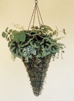 12 Inch Diameter Conical Hanging Basket (Planter Only)