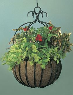18 Inch Imperial Hanging Planter (Basket Only/No Liner)