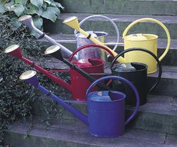 Small Yellow Oval Watering Can
