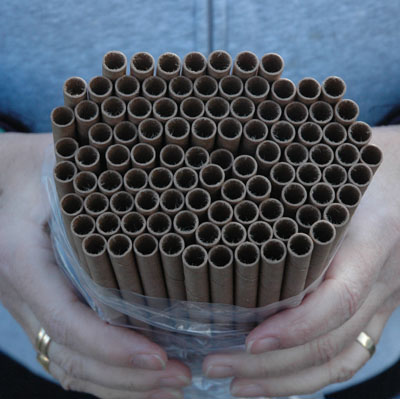 Replacement Nest Tubes (100 Tubes)