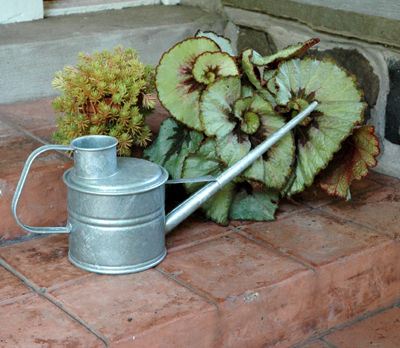 Hot Dipped Greenhouse Watering Can