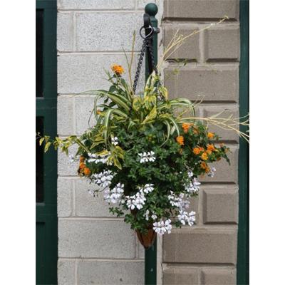 14 Inch Diameter Conical Hanging Basket/Liner Set