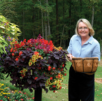 14 Inch Single Tier Basket Planter & Liner Set