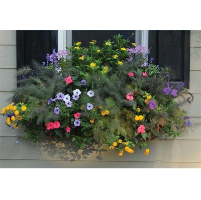 24 Inch Window Box Planter & Liner Set