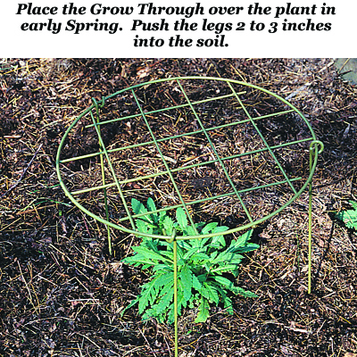 Grow Through Plant Support Leg (Heads sold separately)