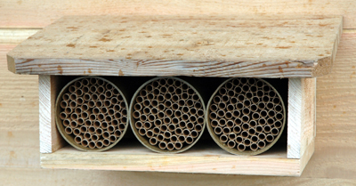 Cedar Shelter Kit With Standard Mason Bee Houses Included