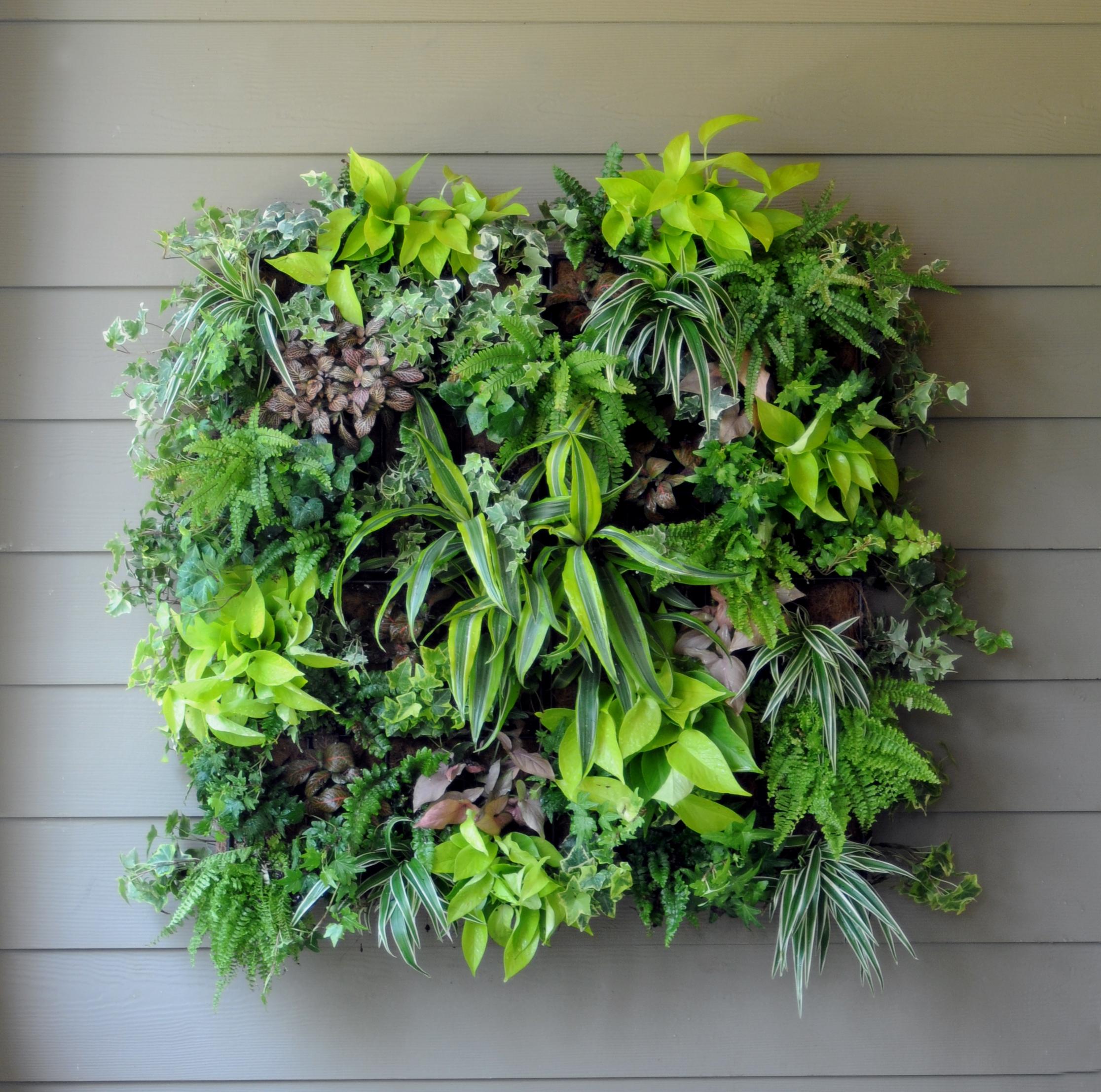 Pamela Crawford Living Wall Planter w/ Liner