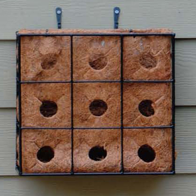 Pamela Crawford Living Wall Replacement Liners (Frame Sold Separately)