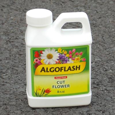 Algoflash Cut Flower Food