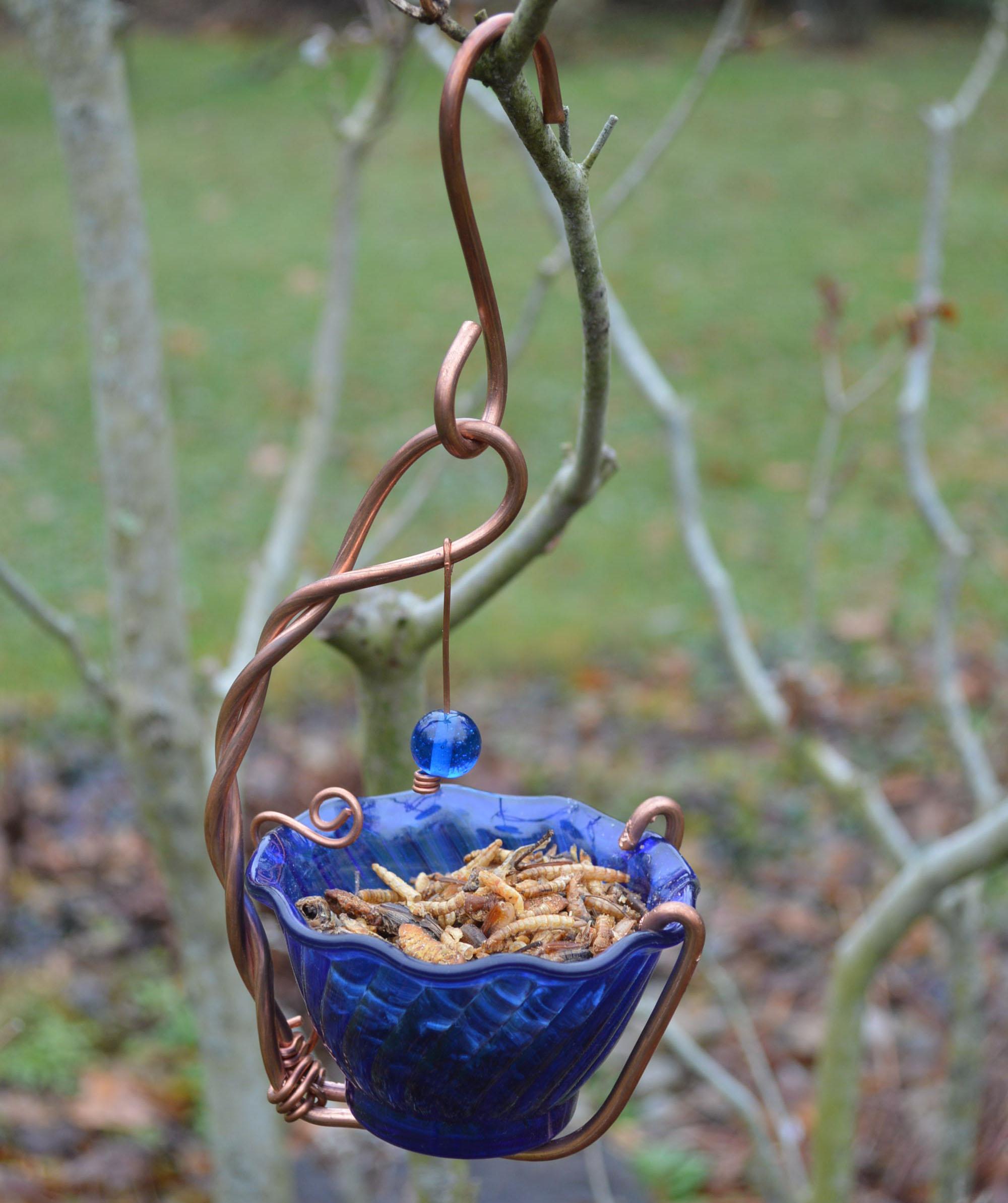 Bluebird Mealworm Feeder