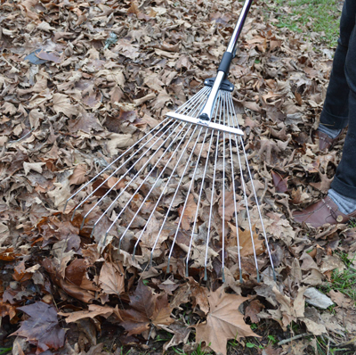 Darlac  Leaf Rake - Telescopic and Expandable