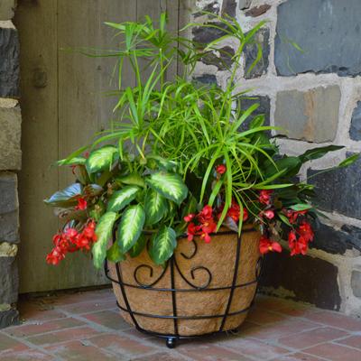 17 Inch Patio Planter w/Coco Fiber Liner