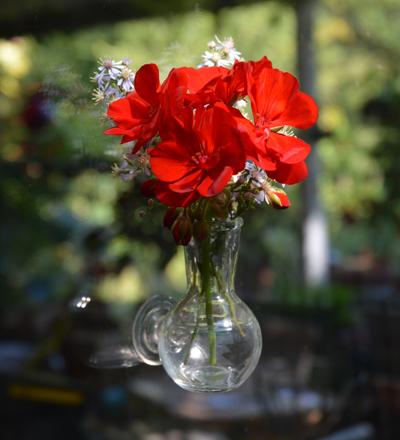 Floral Illusion
