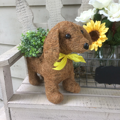 Daisy the Coco-Fiber Dog Topiary Planter