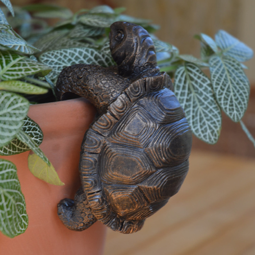 Tortoise Pot Buddy
